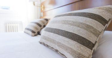 Comment traiter les punaises de lit