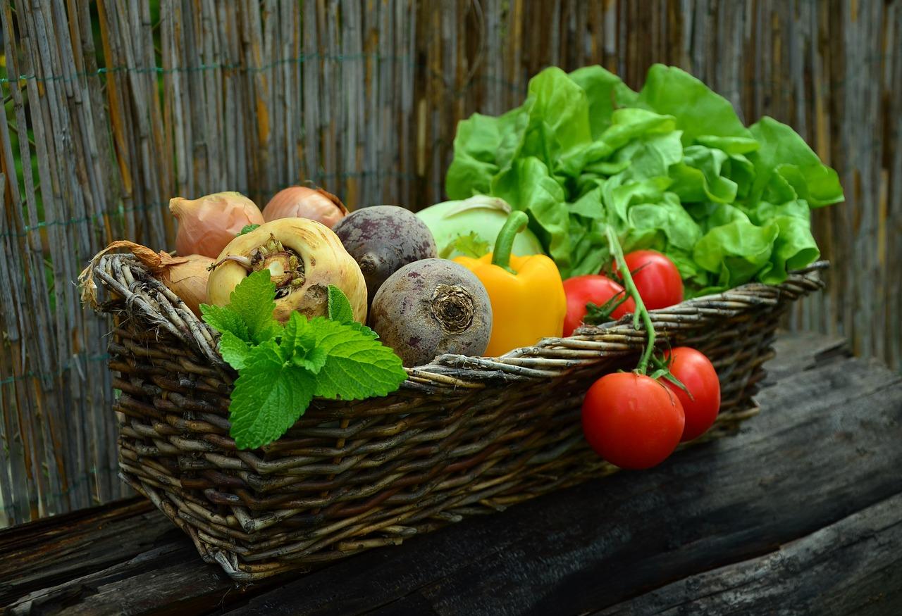 Comment faire manger des légumes à vos enfants