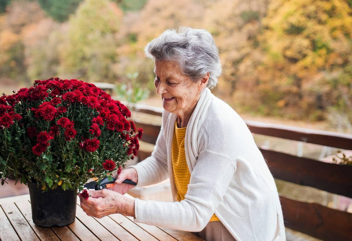 personne âgée teleassistance